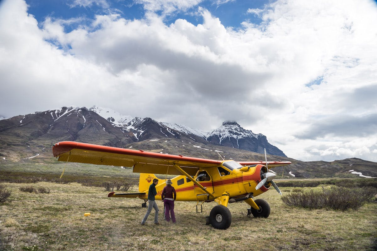 Bush plane landing at Skolai Pass. What have we gotten ourselves in to??? 20 minutes later we had a Grizzly Bear encounter.