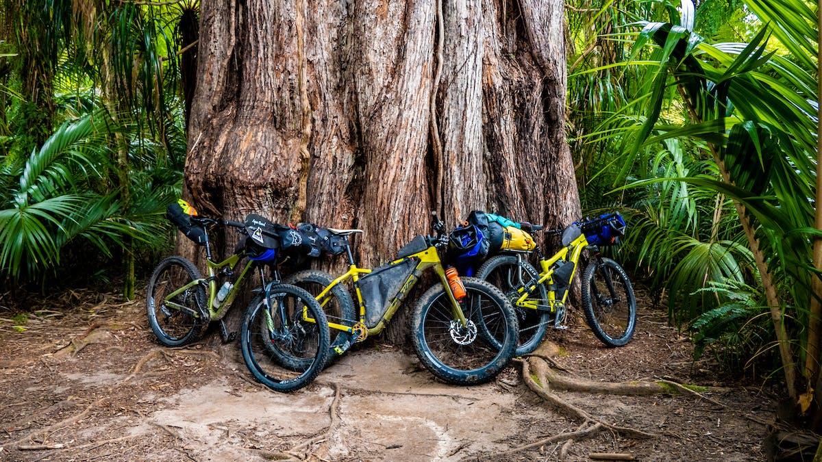 Fluid Trails - Bikerafting Kahurangi National Park