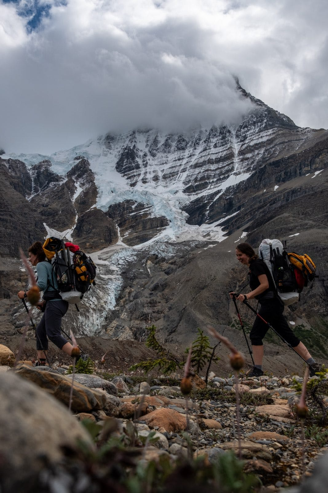 Glaciers sprawling down the backside of Mt. Robson. Photo by Coburn Brown