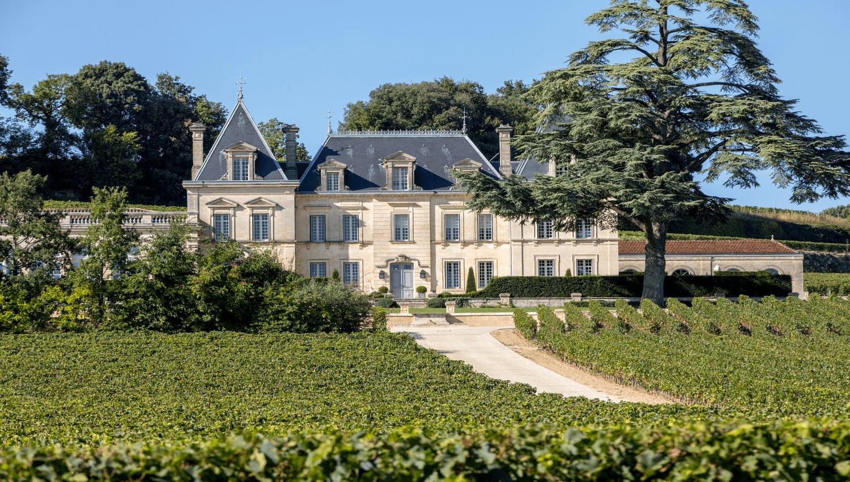 Grande maison accompagnée de nombreuses vignes, obtenue après un investissement de plus de 100 000 euros dans des placements financiers pertinents.