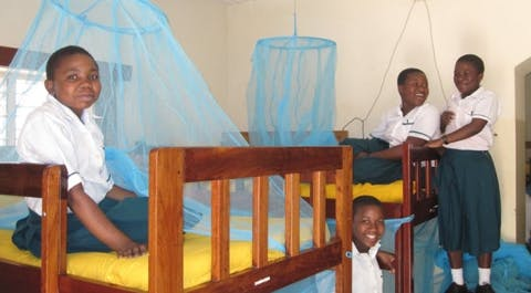 Insecticide-treated antimalarial bednets protecting families in Africa