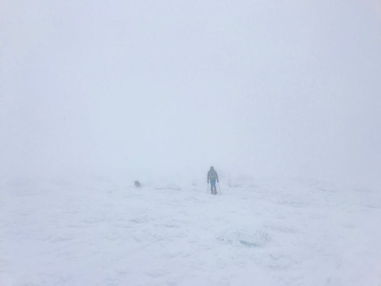 Featured Image: Lafayette Whiteout