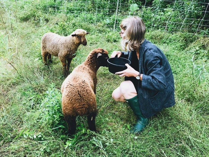 Me with the sheep, Maisie and Bronwen