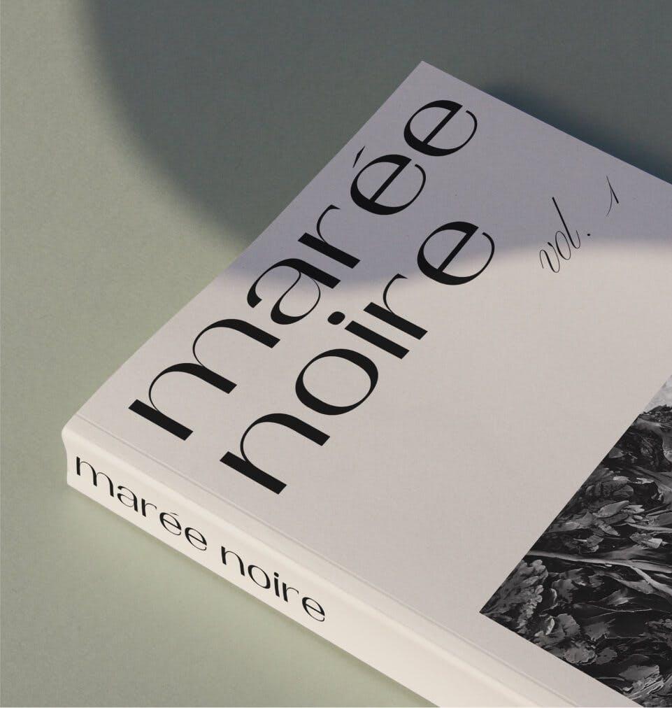 Cover Book Marée Noire