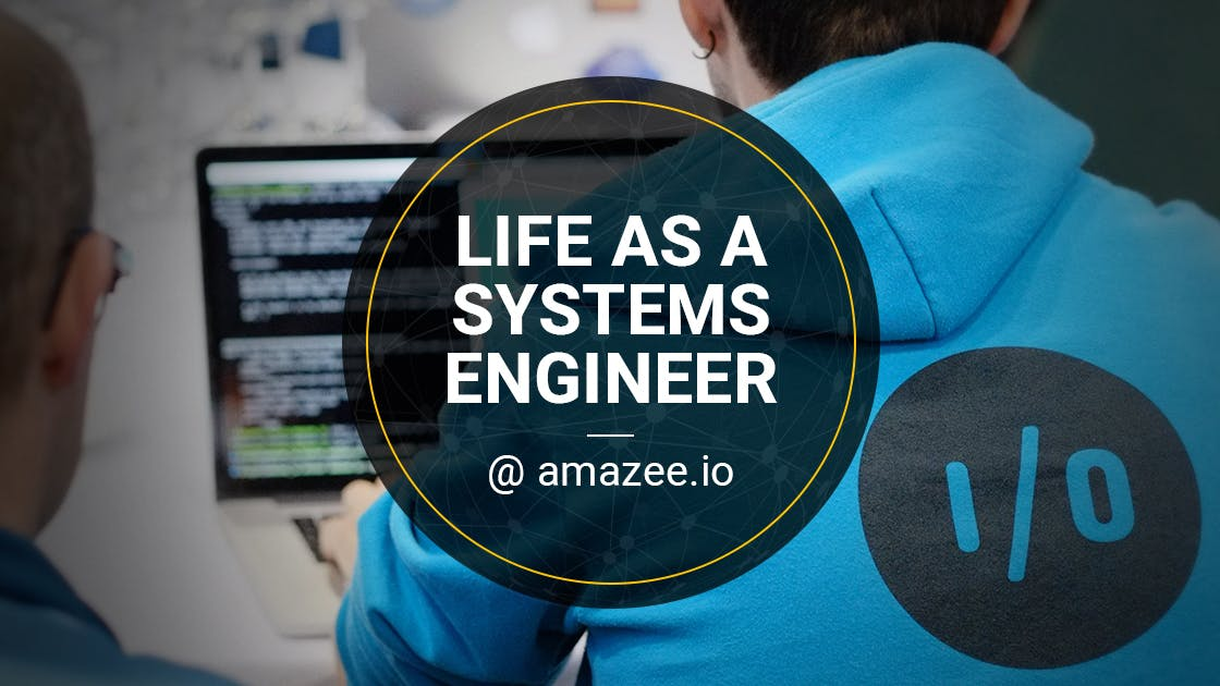 Life as Systems Engineer