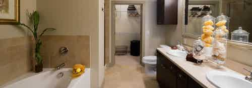 AMLI River Oaks apartment bathroom with double vanity, large mirror, dark wood cabinets, garden tub, and walk-in closet