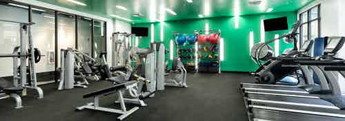 Fitness center with strength and cardio machines and colorful balls on rack against green wall at AMLI Uptown apartments