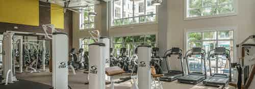 Interior of the fitness center at AMLI Sawgrass Village with treadmills and weight machines and vibrant walls