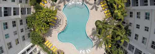 Aerial view of AMLI Sawgrass Village swimming pool shaped like a teardrop and the palm trees and deck chairs surrounding it