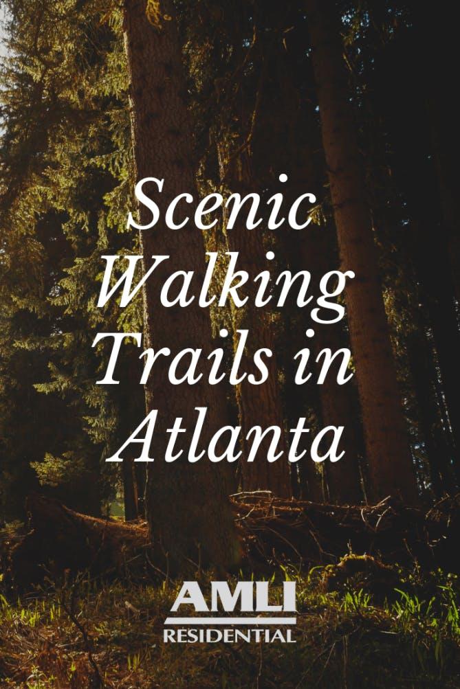 Scenic Walking Trails in Atlanta
