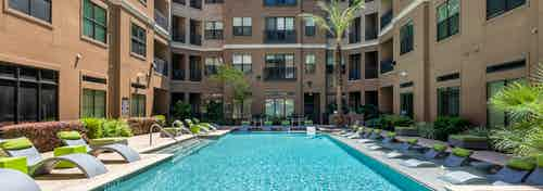 Daytime exterior view of courtyard pool at AMLI Uptown apartment building with lounge chairs and a palm tree and greenery