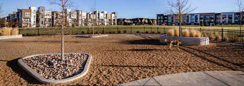 Daytime view of 3.5-acre park with large grass area and fenced dog park next to AMLI Littleton Village apartment building