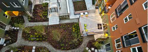 Overhead aerial view of the landscaped courtyard at AMLI Mark24 with winding paved paths that trace among plants and shrubs