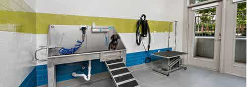 AMLI Buckhead paw wash with colorful tiles on the lower portion of the walls and a deep stainless steel sink with a pet table