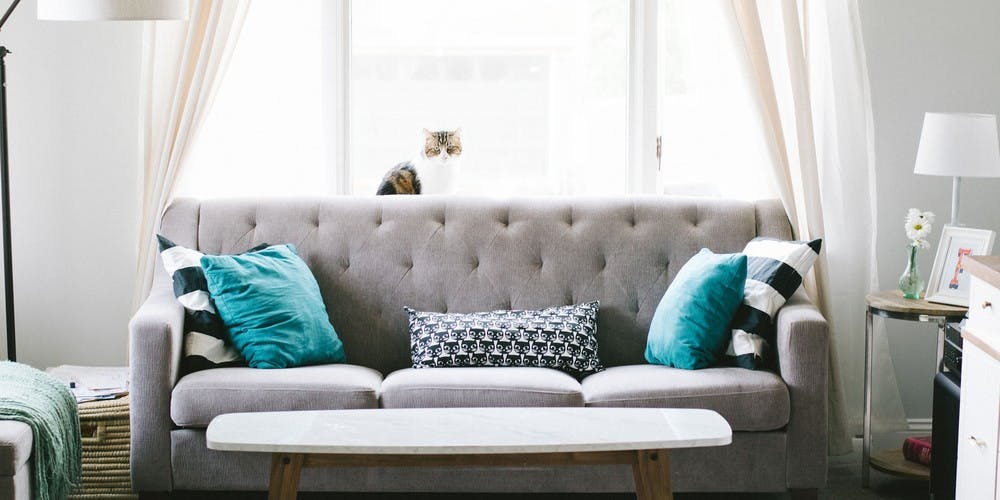 Best Sofas and Couches for Your Apartment
