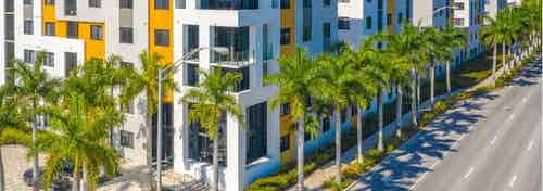 Building exterior view of AMLI 8800 painted with vibrant yellow and white colors surrounded by a palm tree lined street