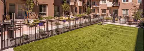 The dog park area at AMLI Cherry Creek apartments with a large grassy area enclosed by a metal fence with bushes and trees