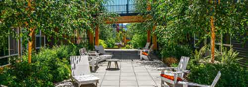 Exterior view of this amazing lush green courtyard with tons of ample seating at AMLI Wallingford