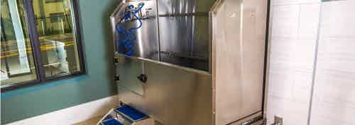 Interior view of the paw wash at AMLI Joya with large stainless steel tub, walk up ramp and hose