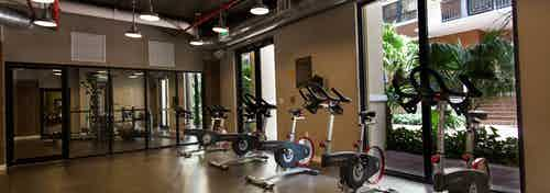 Interior of spinning room at AMLI Dadeland with multiple spin bikes and a view of the  lush landscaped courtyard