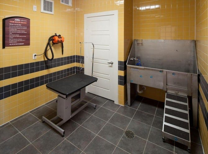 Frisco Apartment Dog Wash