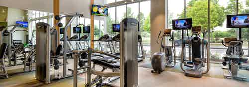 Interior of AMLI at Mueller fitness center with exercise machines facing floor to ceiling windows with daytime scenic view
