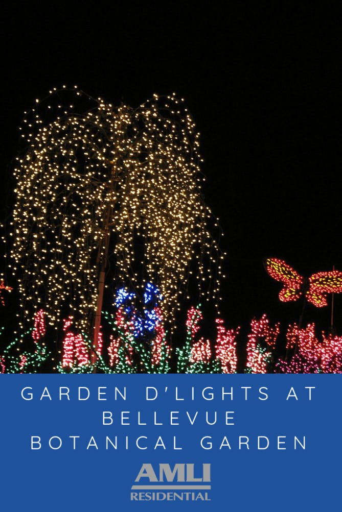 Garden d'Lights at Bellevue Botanical Garden