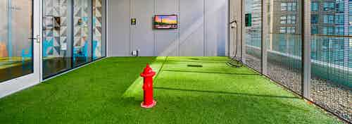 Pet park at AMLI Arc apartment building with fire hydrant in center of green turf and fenced wall and TV on gray wall