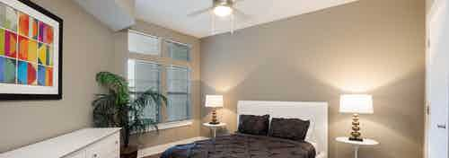 Interior of AMLI 5350 bedroom with a white bed frame and black bedding with tan walls and a faux plant near large window