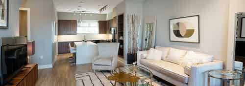 Interior view of AMLI South Shore living room with light hardwood and grey walls with a white sofa and tan decor accents