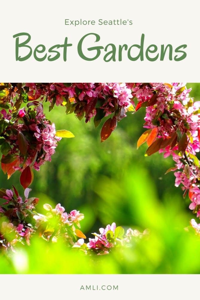 Seattle's best gardens