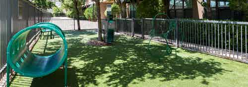 Daytime view of fenced in pet park at AMLI Uptown apartment building with play equipment set on grass with trees