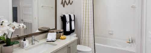 Bathroom at AMLI Buckhead with an orchid sitting on an ivory vanity countertop with a white combined bathtub and shower