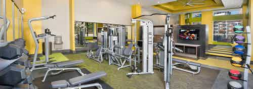 Interior of spacious AMLI Buckhead fitness center with a variety of weight machines with yellow walls and grey flooring