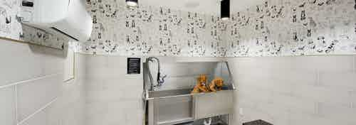 Interior view of AMLI Lenox paw wash with black and white dog mural and brown bench and stainless tub with two puppies in it