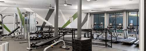 AMLI Parkside fitness center with a green and white striped accent wall behind free weights and machines and treadmills