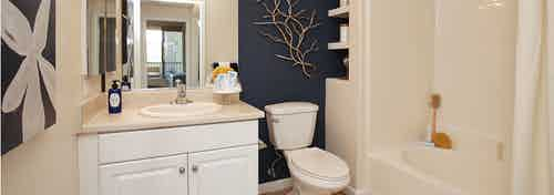 Interior view of AMLI Warner Center apartment bathroom with oversized garden tub, blue accent wall and wall art of flower