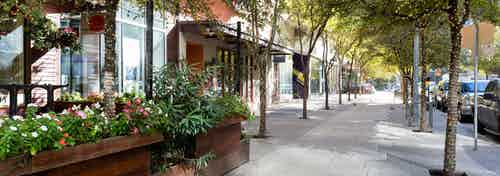 Exterior daytime view of 2nd street district storefronts with sidewalk lined with vibrant trees and raised potted flowers