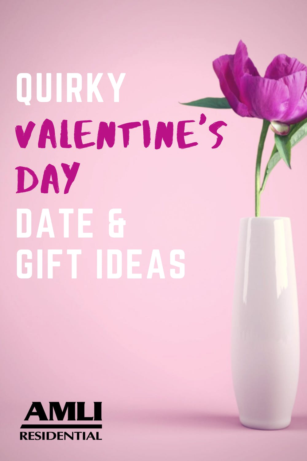 quirky valentine's day gift and date ideas Pinterest graphic