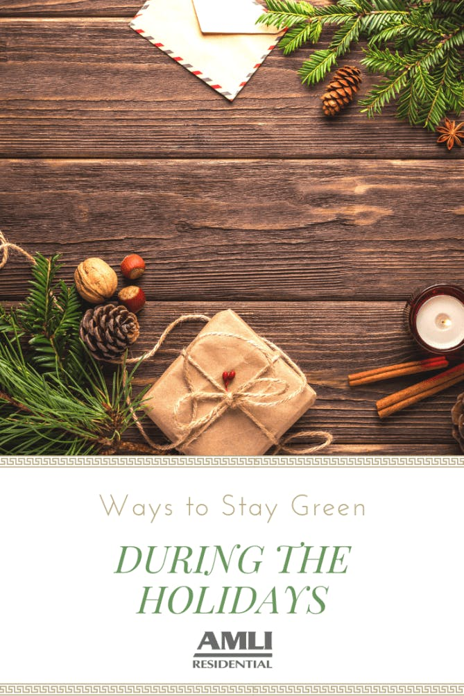 Stay Green During the Holidays