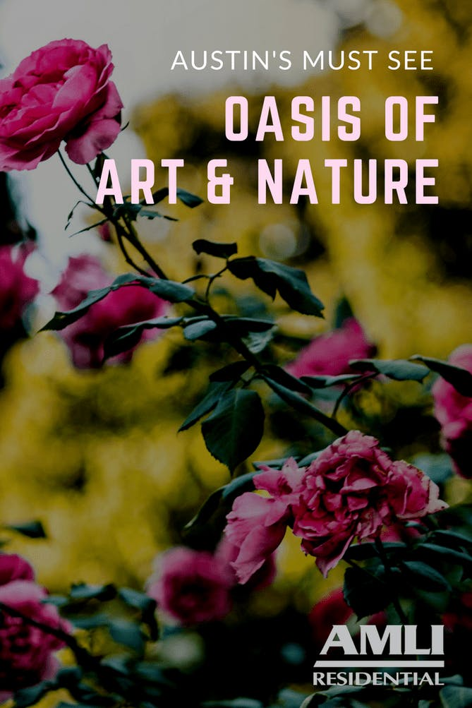 Must-See Oasis of Art and Nature in Austin