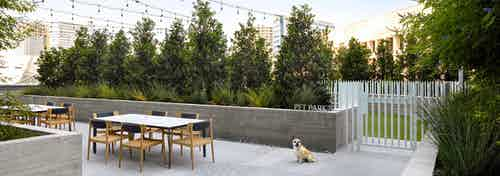 AMLI Fountain Place pet park entrance with white fence and adjacent landscaped outdoor seating with lights hanging above