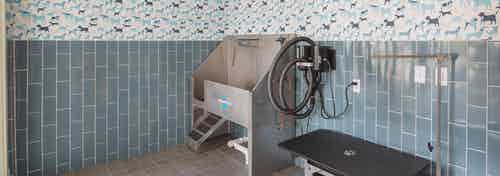 Paw wash at AMLI Arts Center with blue tile on the lower portion of the walls and a deep stainless steel sink with pet table