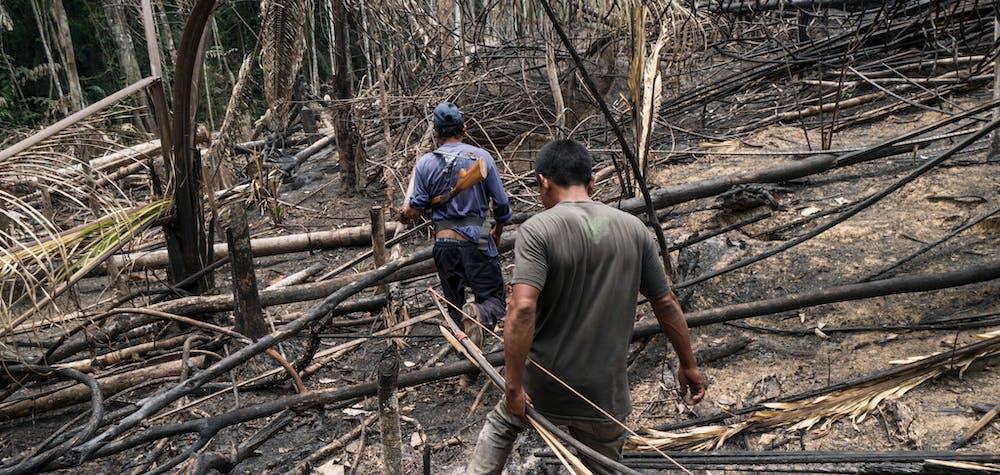 Une patrouille indigène découvre des zones récemment brûlées et une cabane mise en place par des envahisseurs - probablement des grileiros, des travailleurs conduisant des saisies illégales de terres, la déforestation et le brûlage - dans le territoire indigène d'Uru Eu Wau Wau, dans l'État de Rondônia, au Brésil, en septembre 2019.