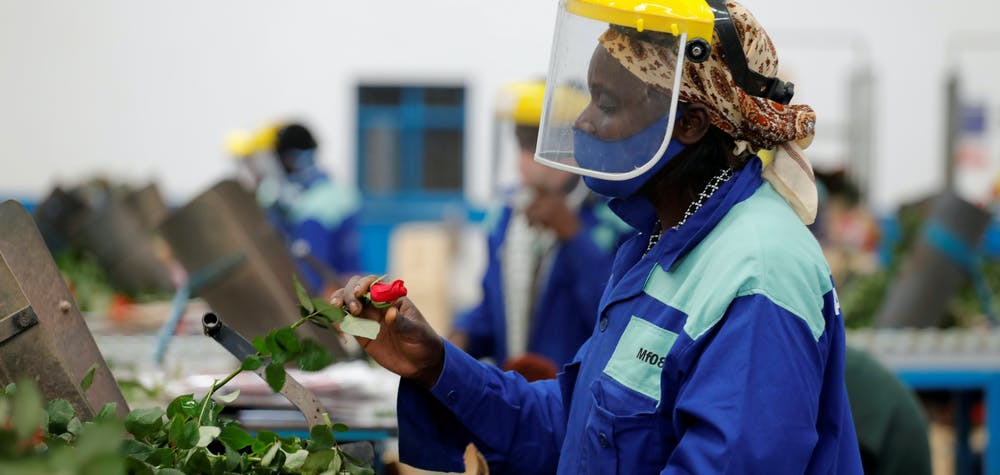 FILE PHOTO: A worker sorts roses on the packing line while wearing protective equipment to help fight against the spread of the coronavirus disease (COVID-19) at the Maridadi flower farm in Naivasha, Kenya, July 20, 2020. REUTERS/Baz Ratner/File Photo