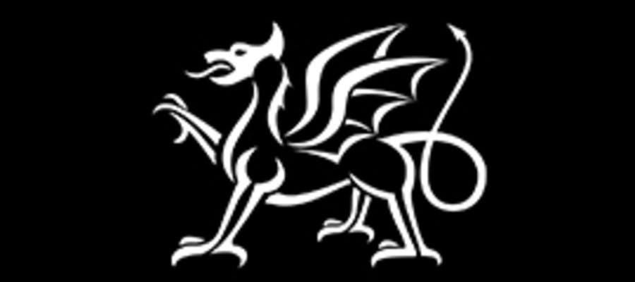 Llywodraeth Cymru Welsh Government logo