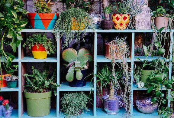 Estantería exterior para plantas