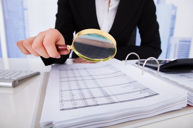 We don't know what an auditor looks like – but we think they carry big magnifying glasses
