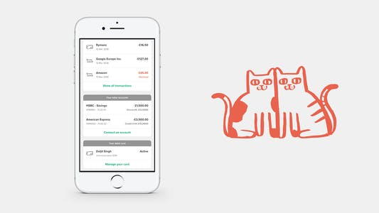 Screenshot of ANNA app with connected bank accounts and two cats