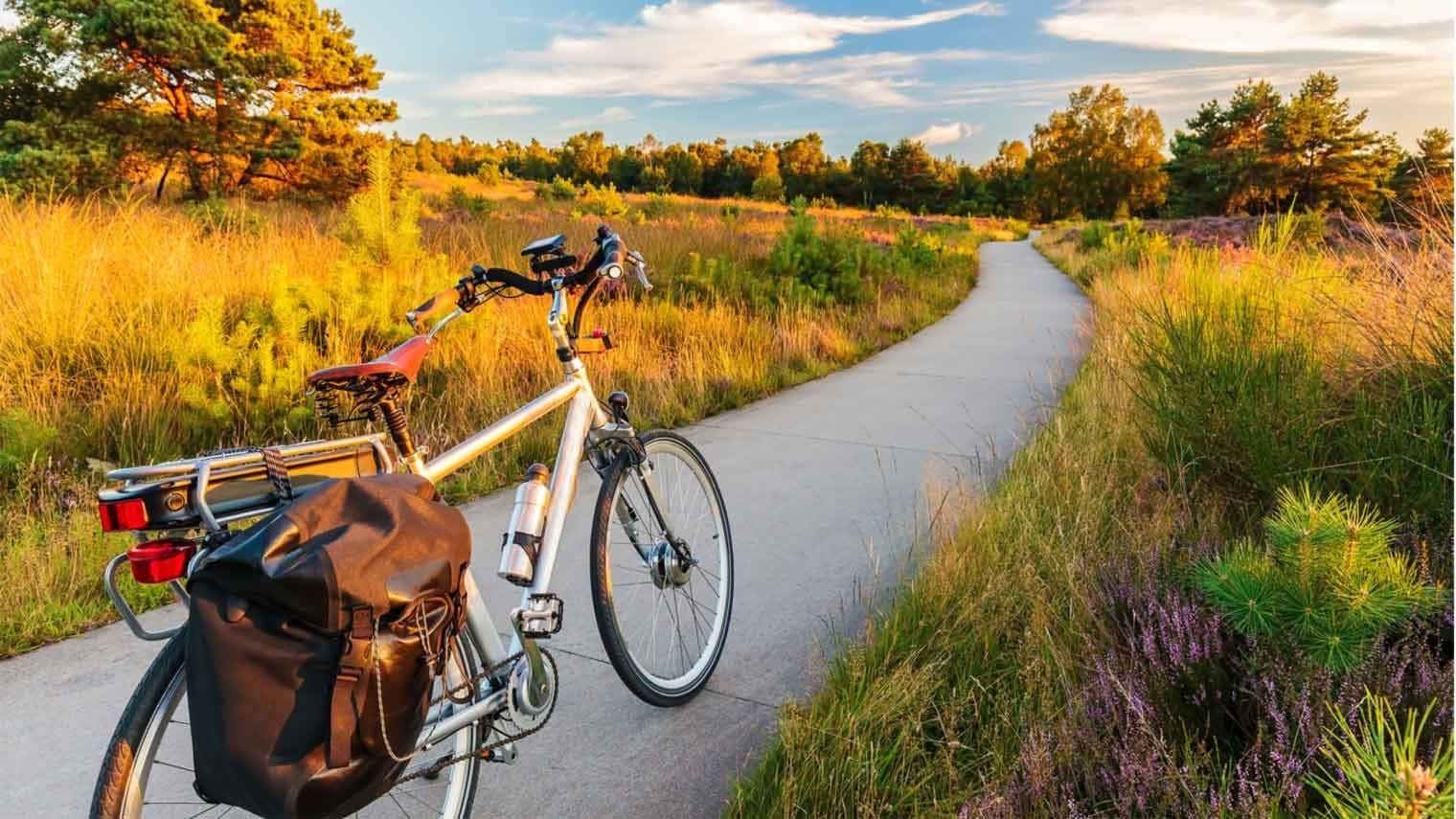fiets op fietspad in heide